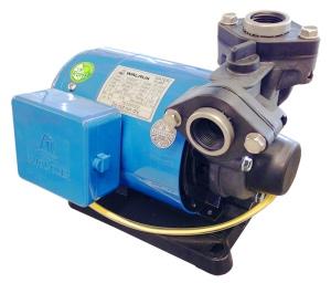ELECTRIC PUMP: WALRUS TP320-P 3/4