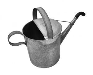 WATERING CAN: 8LTR GALV