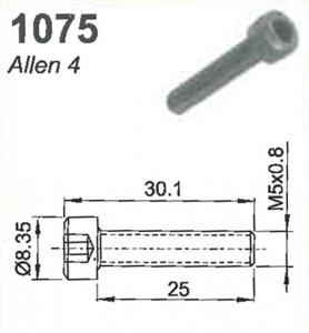 SCREW: M5 X 0.8 X 25.0MM  (ALLEN 4)