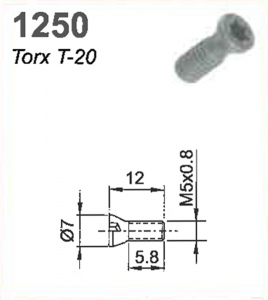 SCREW (TORX 20) M5X0.8X11MM#1250